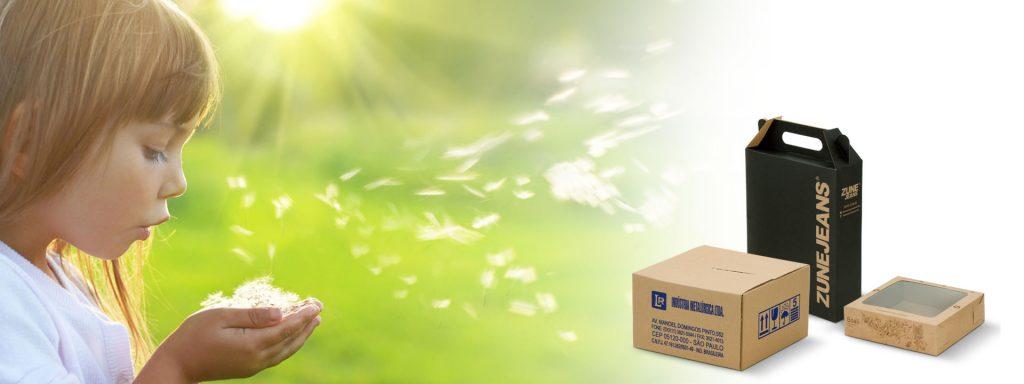 Caixas de Papelão e Presentes - Ricapel Embalagens